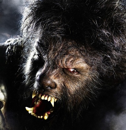 The Wolfman 01